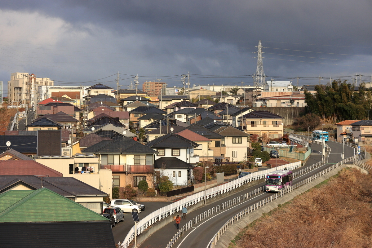 f:id:katayoku_no_hito:20210102151217j:plain