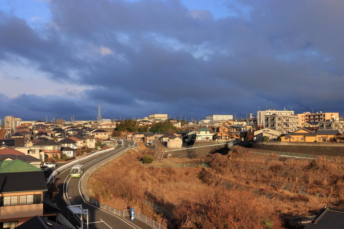 f:id:katayoku_no_hito:20210102154208j:plain