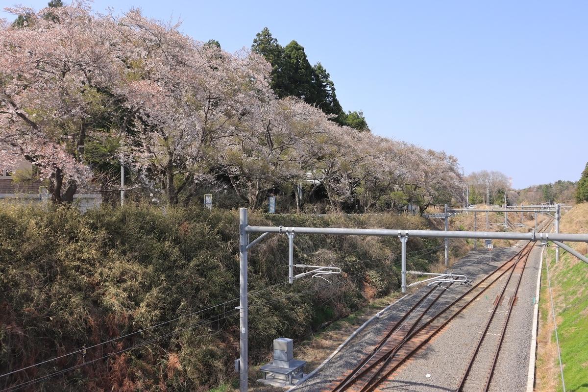 f:id:katayoku_no_hito:20210403132706j:plain
