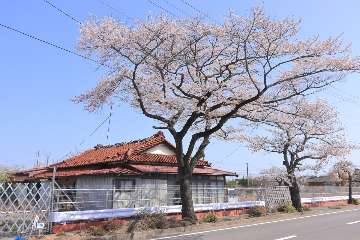 f:id:katayoku_no_hito:20210403134135j:plain