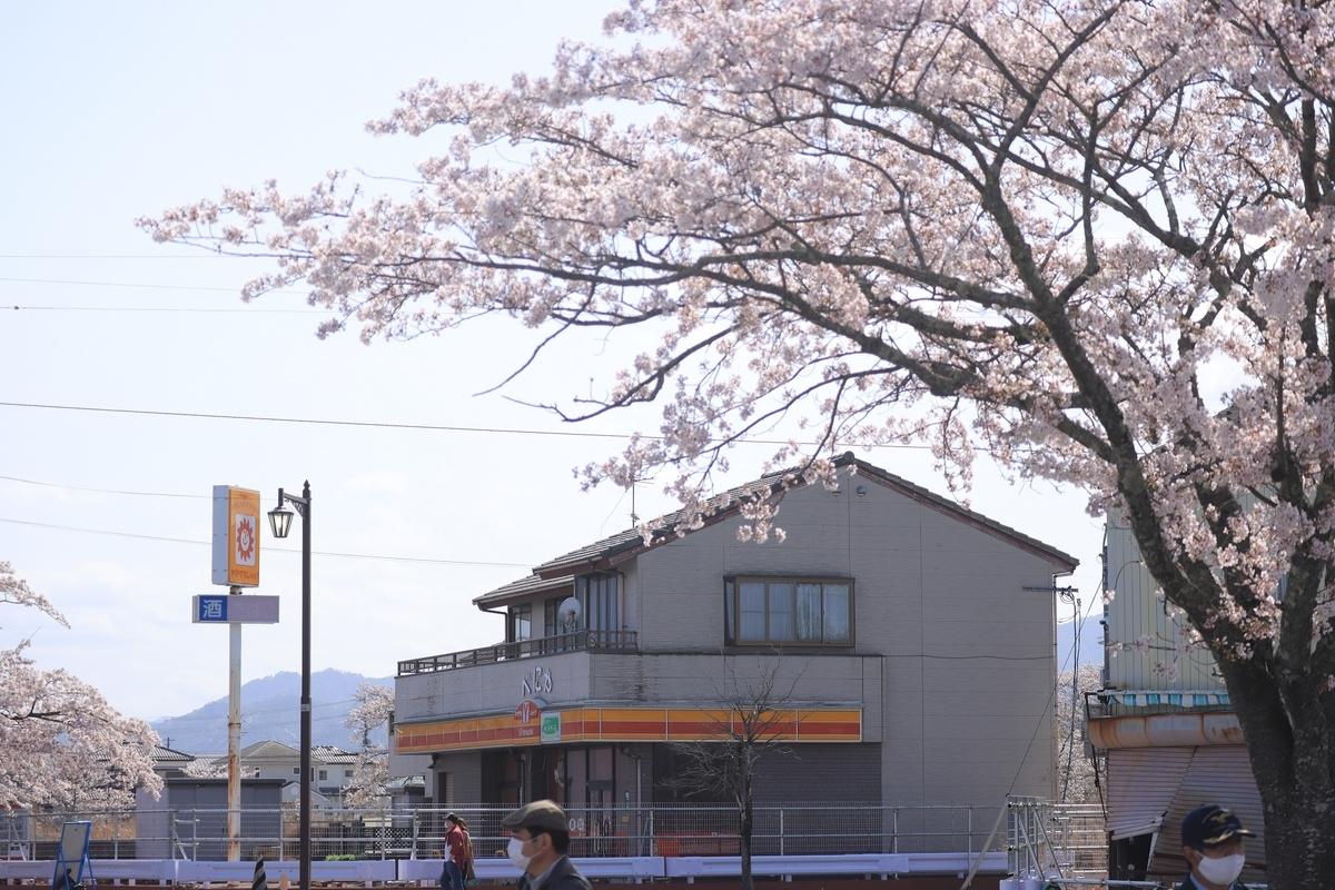 f:id:katayoku_no_hito:20210403134819j:plain