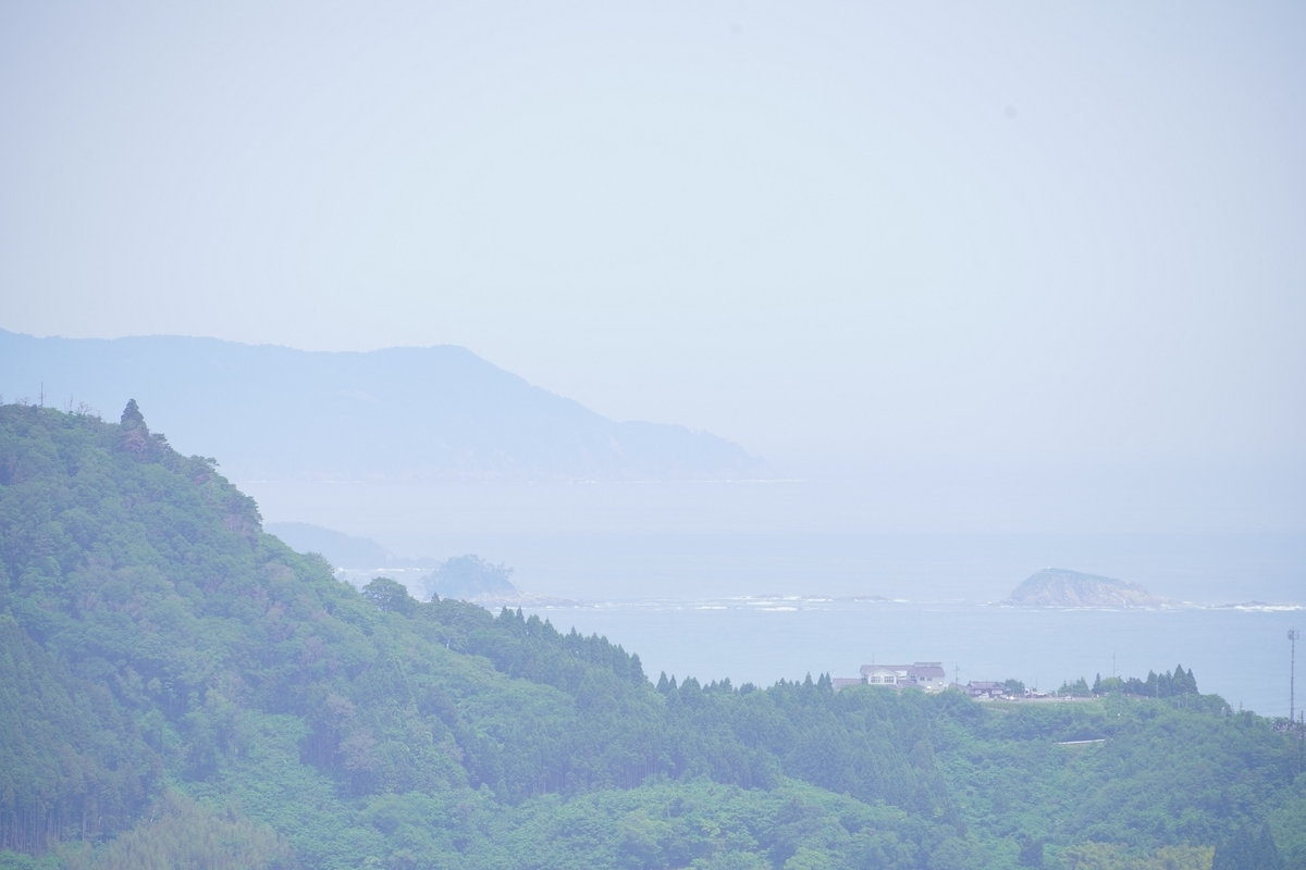 f:id:katayoku_no_hito:20210606113541j:plain