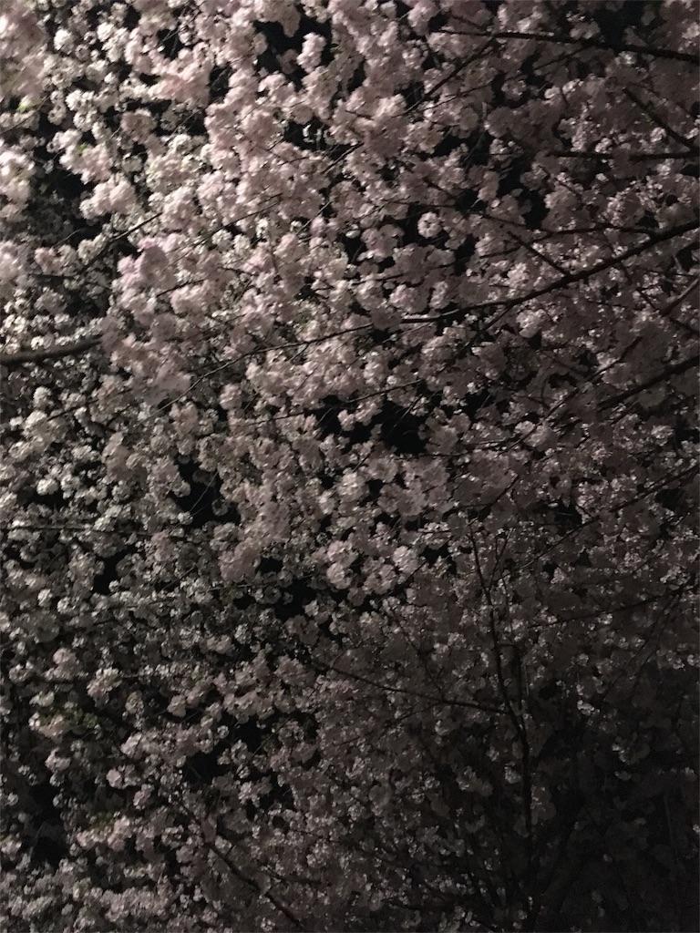 f:id:katochudoku:20170410221303j:image
