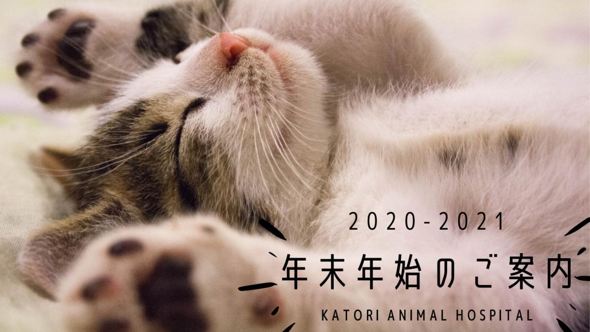 f:id:katori-ah:20201226181951p:plain