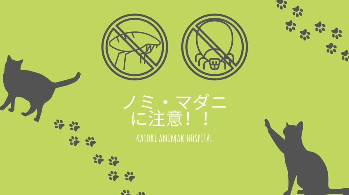 f:id:katori-ah:20210130224825j:plain
