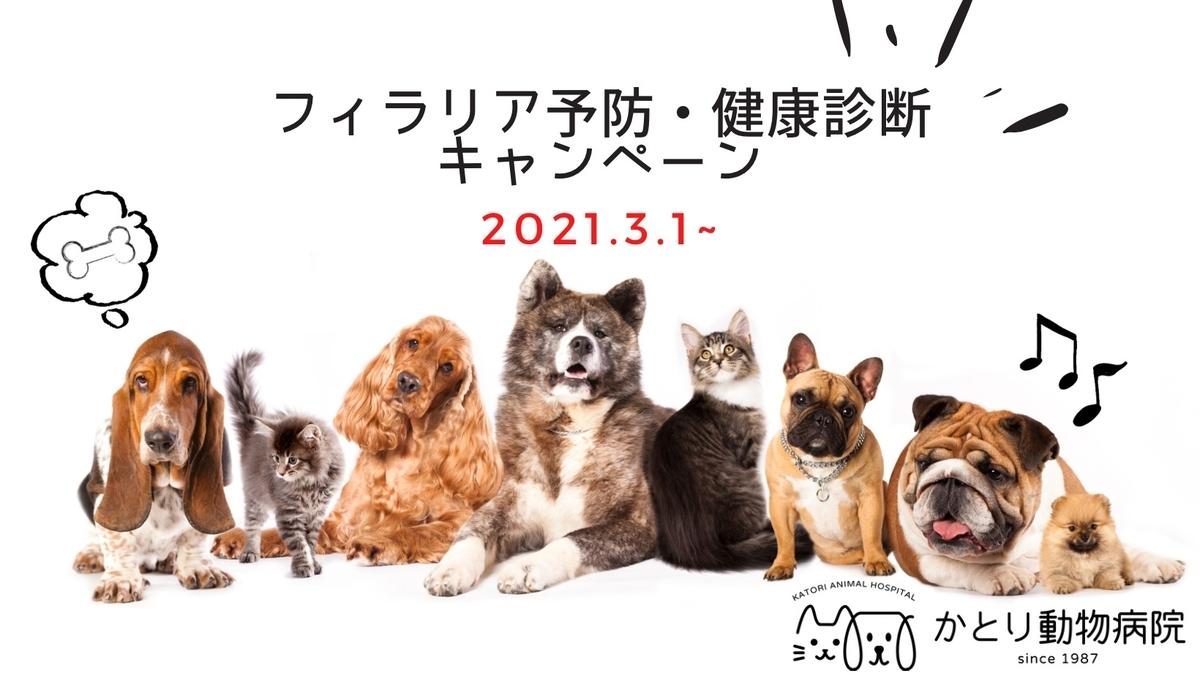 f:id:katori-ah:20210227214422j:plain