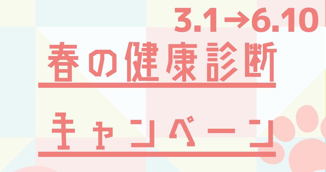 f:id:katori-ah:20210227215729p:plain