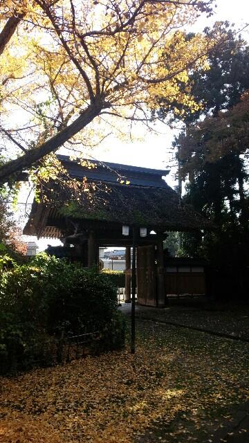 f:id:katoributa-sn:20161114054245j:image