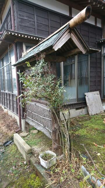 f:id:katoributa-sn:20170315232001j:image