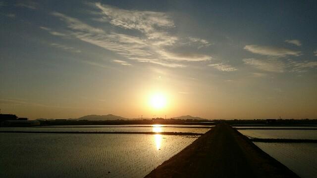 f:id:katoributa-sn:20170506111726j:image