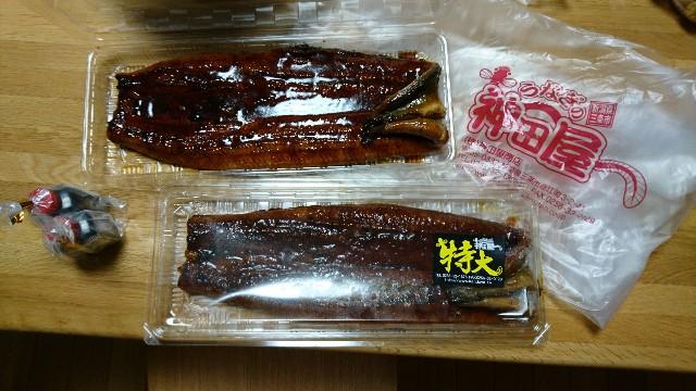 f:id:katoributa-sn:20170801204116j:image