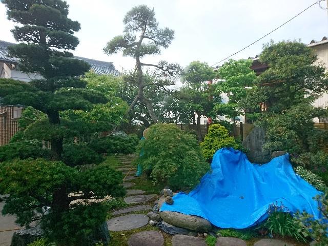 f:id:katoributa-sn:20180607215709j:image