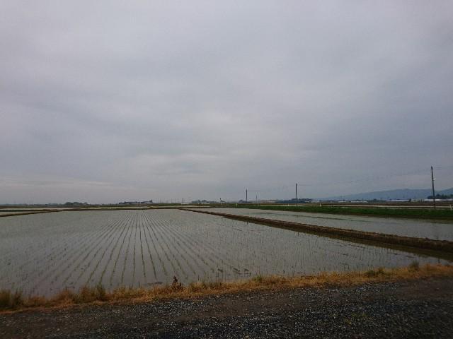 f:id:katoributa-sn:20180608012656j:image