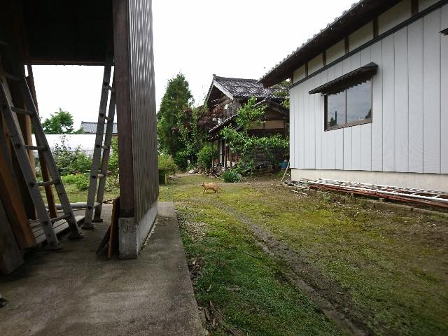 f:id:katoributa-sn:20180608073209j:image