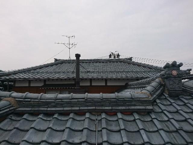 f:id:katoributa-sn:20190425221254j:image