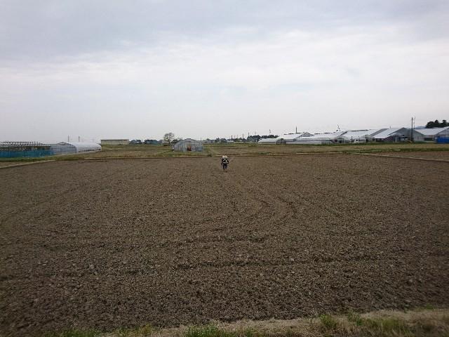 f:id:katoributa-sn:20190425224340j:image