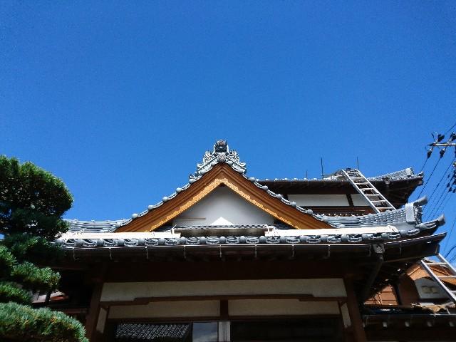 f:id:katoributa-sn:20190714090213j:image