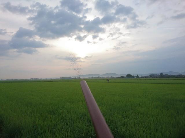 f:id:katoributa-sn:20200109213708j:image