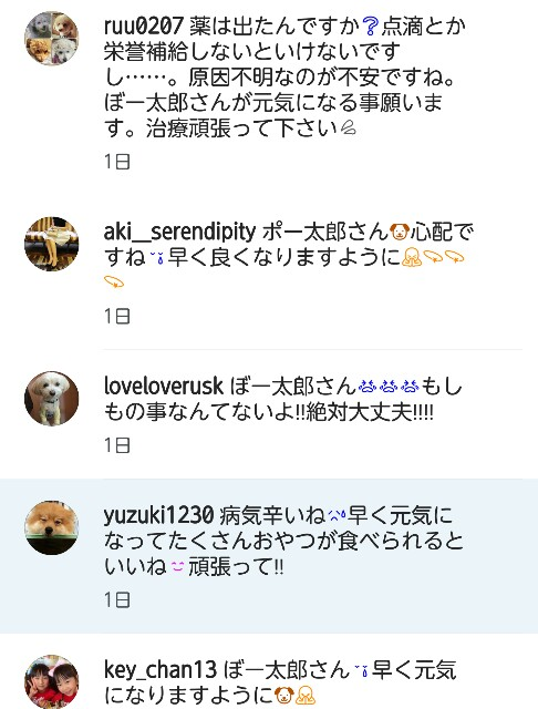 f:id:katorimasahiro:20161129153947j:image