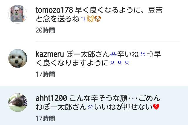 f:id:katorimasahiro:20161129154030j:image
