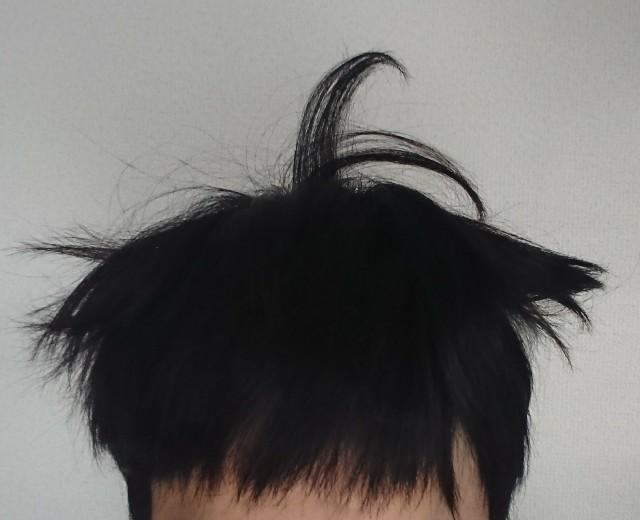 f:id:katorimasahiro:20171102124738j:image