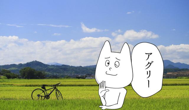 f:id:katorimasahiro:20180605075238j:plain