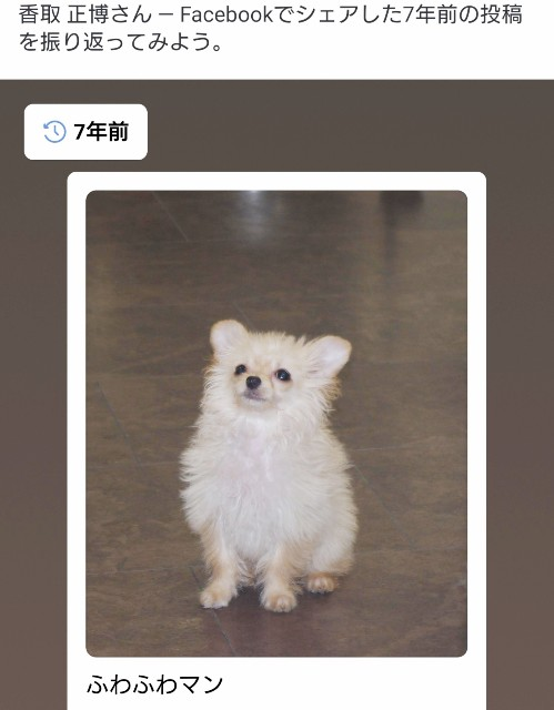 f:id:katorimasahiro:20190125095302j:image