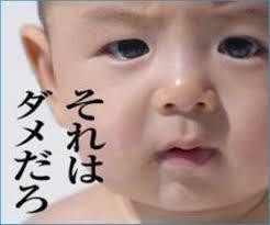 f:id:katoshikao:20190117155953j:plain