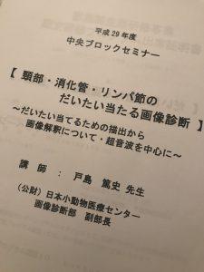 f:id:katsuma-pc:20191210165501j:plain