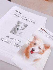 f:id:katsuma-pc:20191210174429j:plain