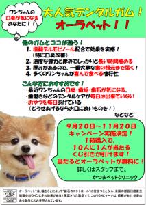 f:id:katsuma-pc:20191210175411p:plain