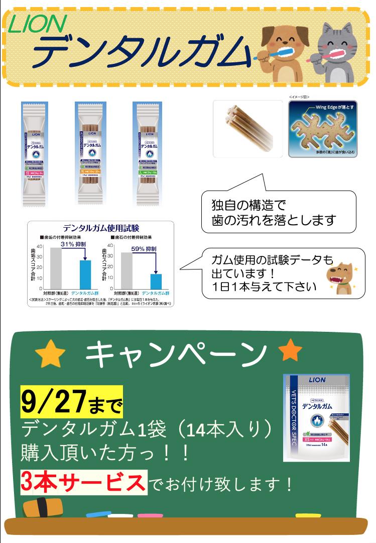 f:id:katsuma-pc:20200903184359p:plain