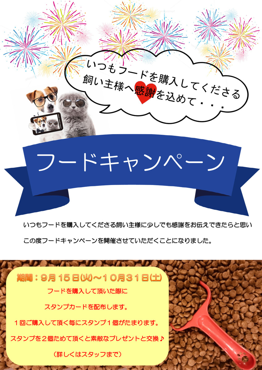 f:id:katsuma-pc:20200923130507j:plain
