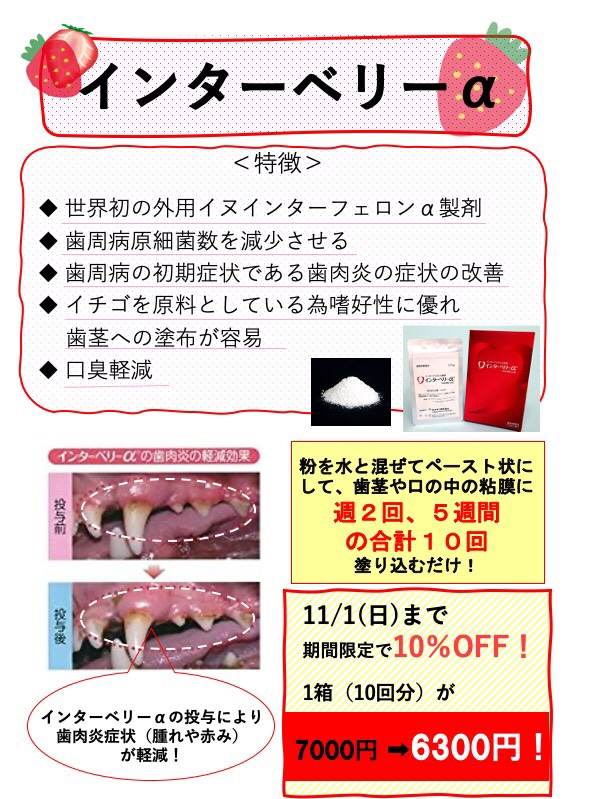 f:id:katsuma-pc:20201011172326j:plain
