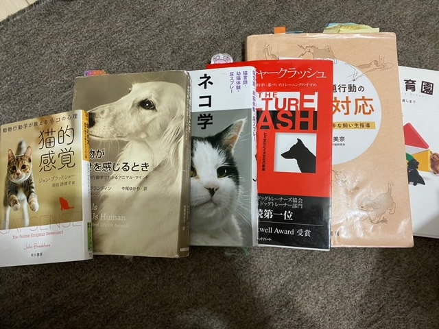 f:id:katsuma-pc:20201212135617j:plain