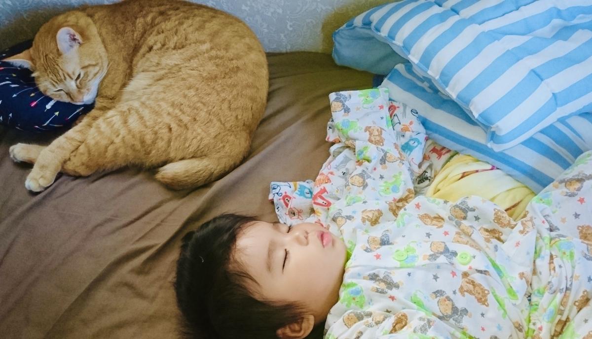 f:id:katsuma-pc:20210615094340j:plain