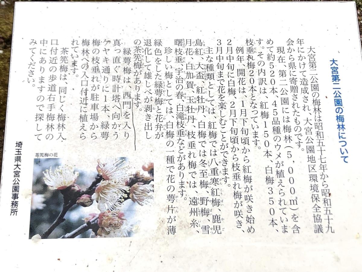 f:id:katsuo_24:20200301131000j:plain
