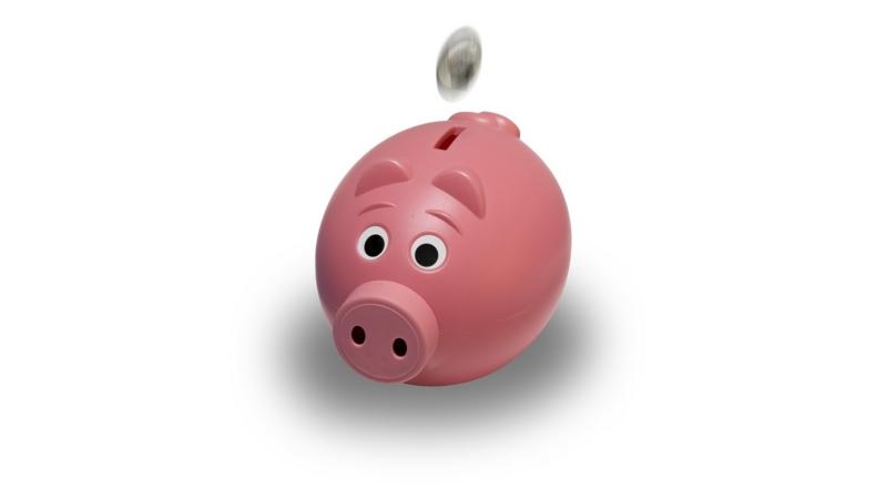 ブタの貯金箱を使い貯金する