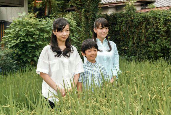 f:id:katsuraakiko:20160910155631j:image