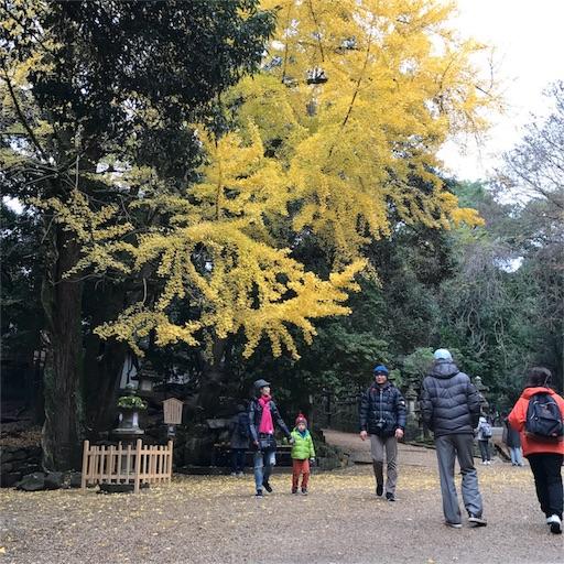 f:id:katsuyuki146:20161201204001j:image