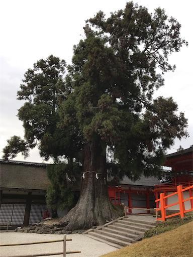 f:id:katsuyuki146:20161201204458j:image