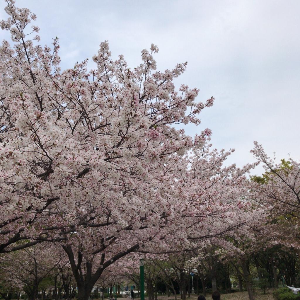 f:id:katsuyuki146:20170415152031j:plain