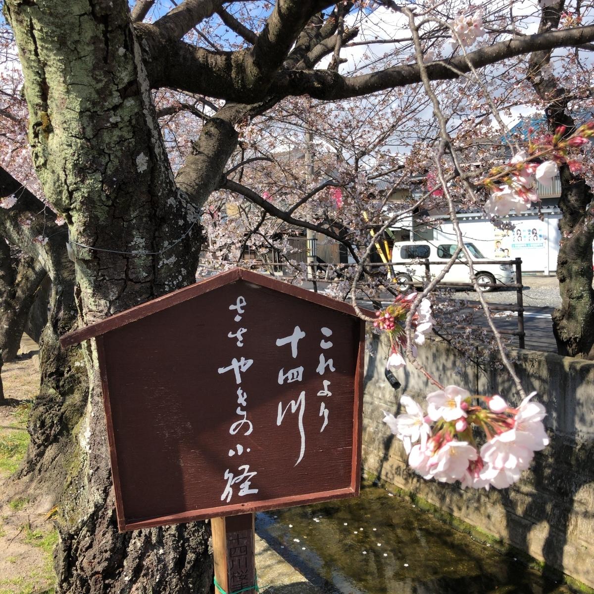 f:id:katsuyuki146:20190402141514j:plain