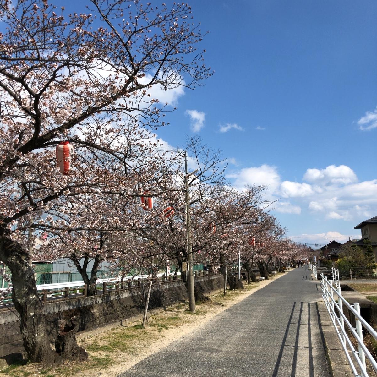 f:id:katsuyuki146:20190402142355j:plain
