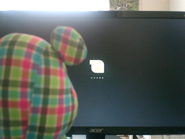 Linux Mintの起動画面を見つめるうろこちゃん