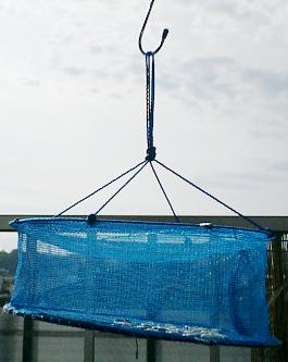 最近は天日干しにダイソーの野菜干しネットを使っています