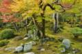 京都新聞写真コンテスト 天龍寺の庭