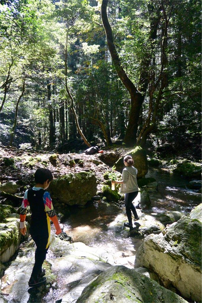 f:id:kawaasobibu:20170110210529j:image