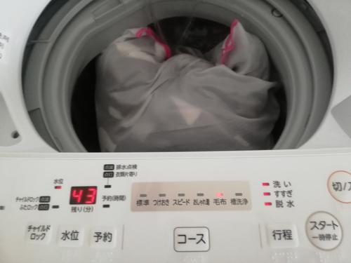 f:id:kawabata100:20190429212416j:plain