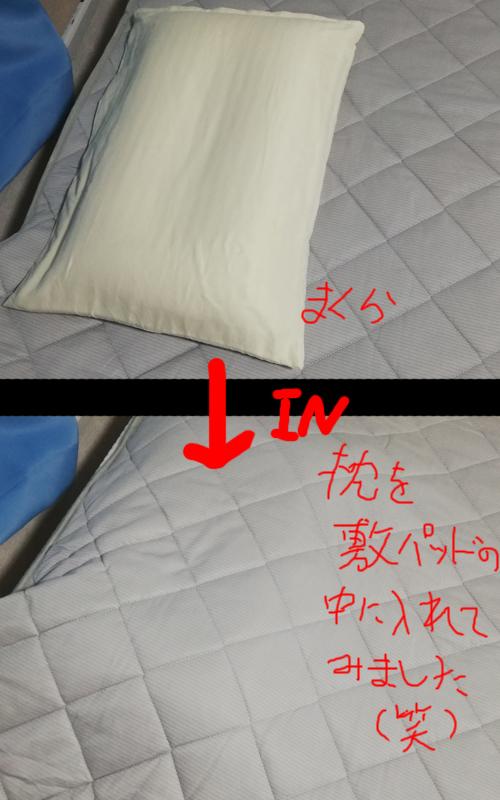 f:id:kawabata100:20190606223840j:plain